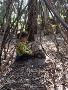 בנינו מחנה בתוך היער הסבוך - יער ראש ציפור
