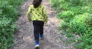 טיול שבת עם הילדים